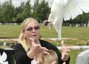 Funeraria palomas blancas