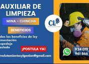 Auxiliar de limpieza / chincha
