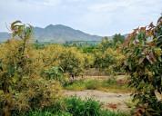 Huaral  lotes 1,000 mt2  para casa linda de campo