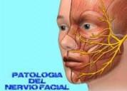 Paralisis facial-tratamiento terapia fisica