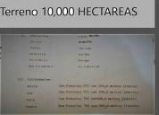 En ocasión vendo terreno 10,000 hectareas en paija